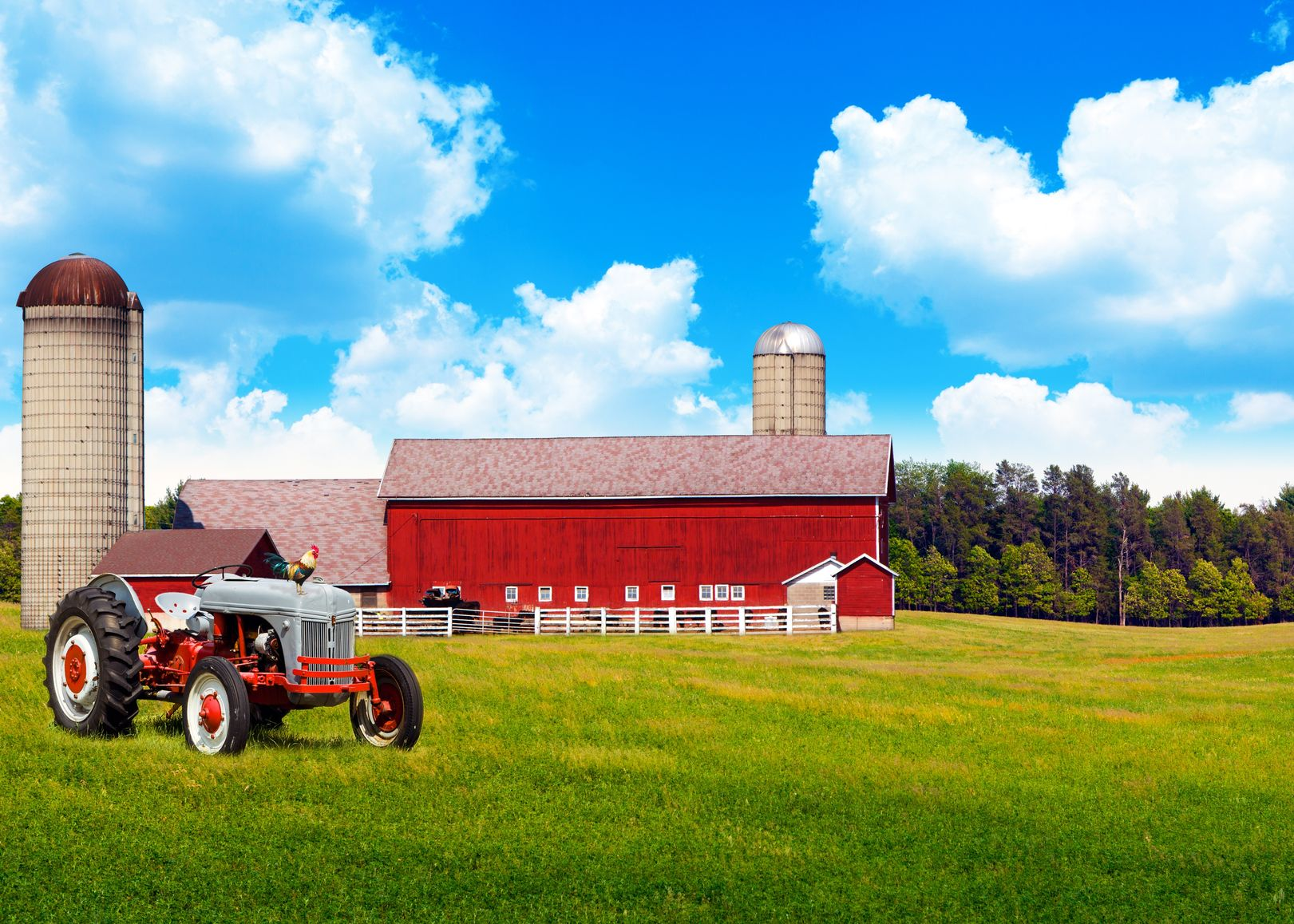 Duluth, MN.  Farm & Ranch Insurance
